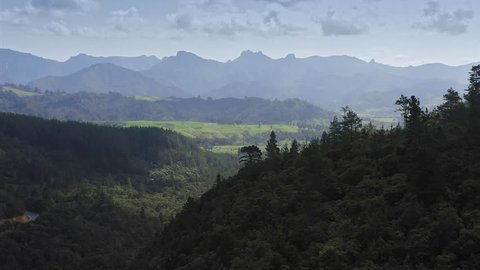 Aerial Over Native Forest And Hills In The Coromandel Peninsula, New Zealand