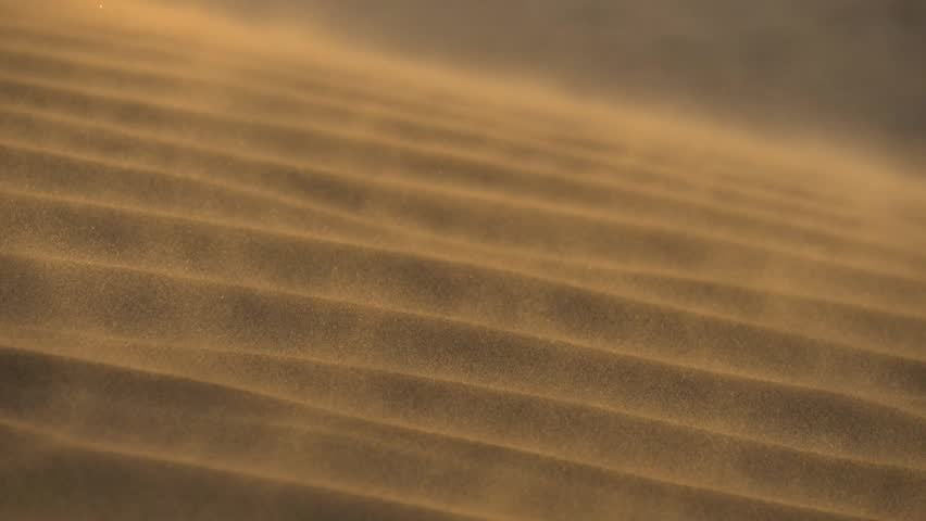 Sand waving in the wind in dunes in desert. Slow motion shot | Shutterstock HD Video #1024592555