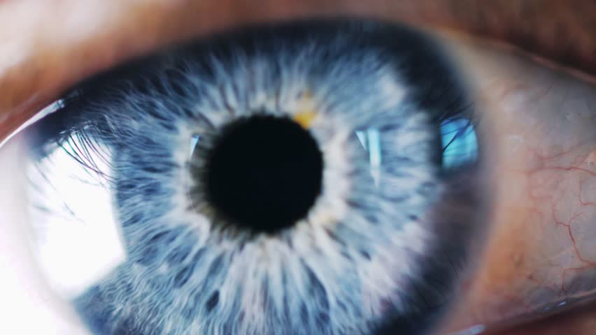 Close up of male blue eye opens up and closes. Macro Shot. slow motion. 3840x2160, 4k | Shutterstock HD Video #1024603205