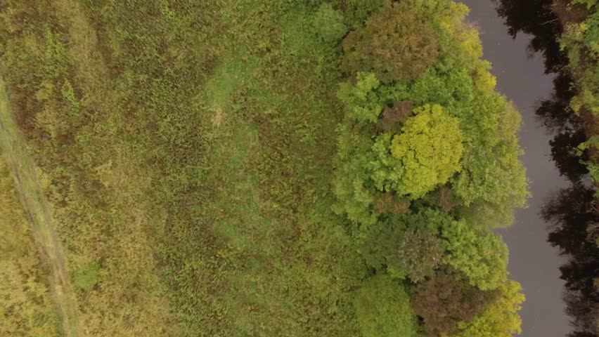 Autumn forest and a small river shooting from a drone | Shutterstock HD Video #1024800245