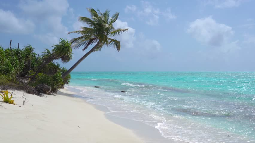 Tropical Sandy Beach of the Deserted Island Innafushi in Baa Atoll, Maldives | Shutterstock HD Video #1025163665