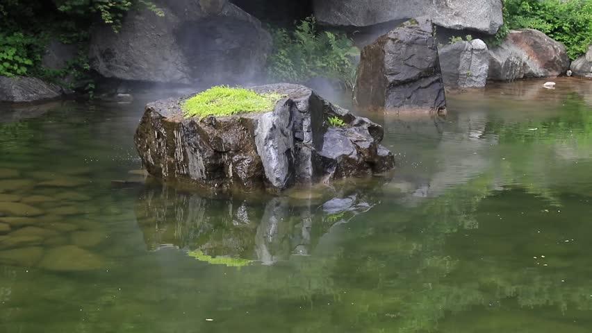 ponds-stocking