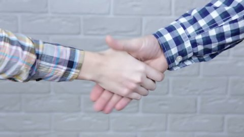 Handshake. Close up woman and man shaking hands. Business partnership concept
