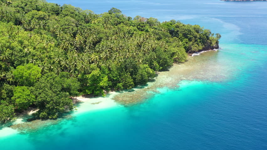 A bird's eye view of the remote island of New Ireland in Papua New Guinea shows reef growth along the coastline. This remote area is part of the Coral Triangle due to its high marine biodiversity. | Shutterstock HD Video #1025685035