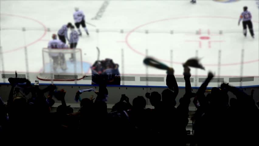 Goal in a Hockey Game. | Shutterstock HD Video #1025778005