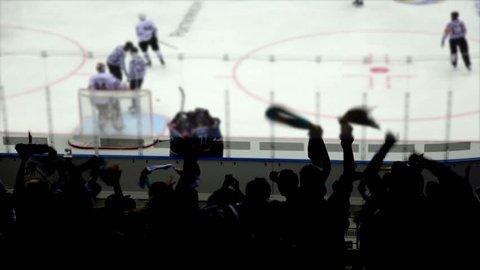 Goal in a Hockey Game.