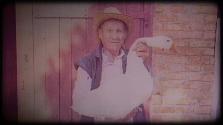 A farmer in a straw hat holds a large white goose.Video archive. Retro. Vintage. Farm animals. Raising animals for meat. Portrait of an elderly farmer. Agriculture. Organic food. Ranch. Not vegetarian | Shutterstock HD Video #1025821775