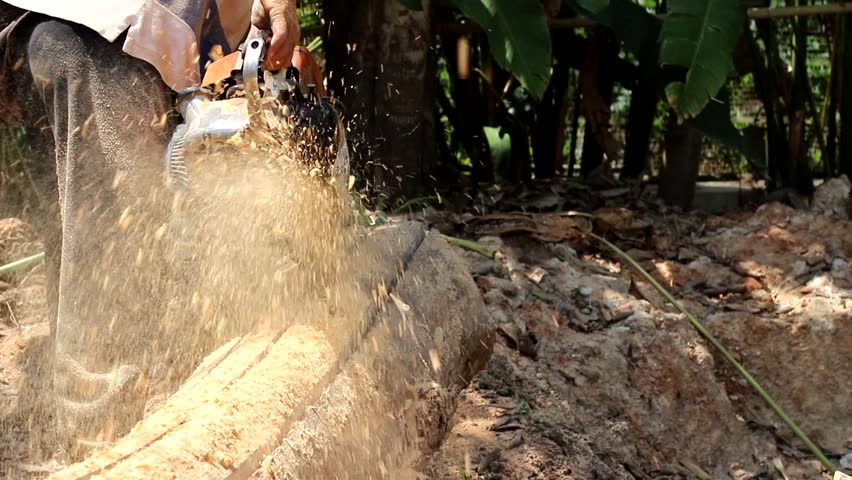 Closeup motion of wood cutting with chainsaw by male worker in bright sunny day of summer. Thailand. | Shutterstock HD Video #1025843495