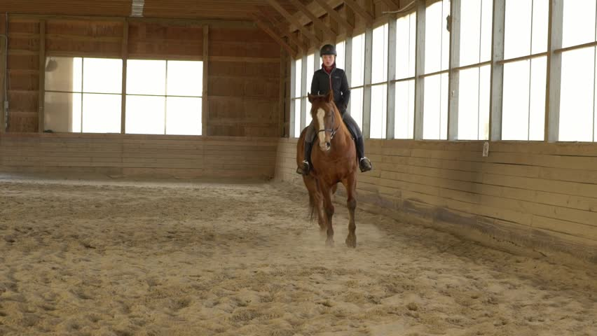 Horse instructor helping learn to ride. Learning and training in the riding school. | Shutterstock HD Video #1025938865