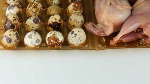 Fresh meat of quail in a plastic brown tray next to the quail eggs on a white background. Female hands take and put the eggs in the tray