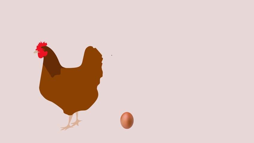 Hen egg Animation Cartoon Chicken Hen laying an egg, Hen Chicken egg illustration and Hen egg zoom | Shutterstock HD Video #1026422345