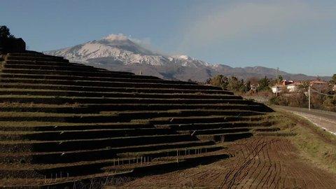Aerial ascending view of Mount Etna in Sicily (Italy) over new established vineyard