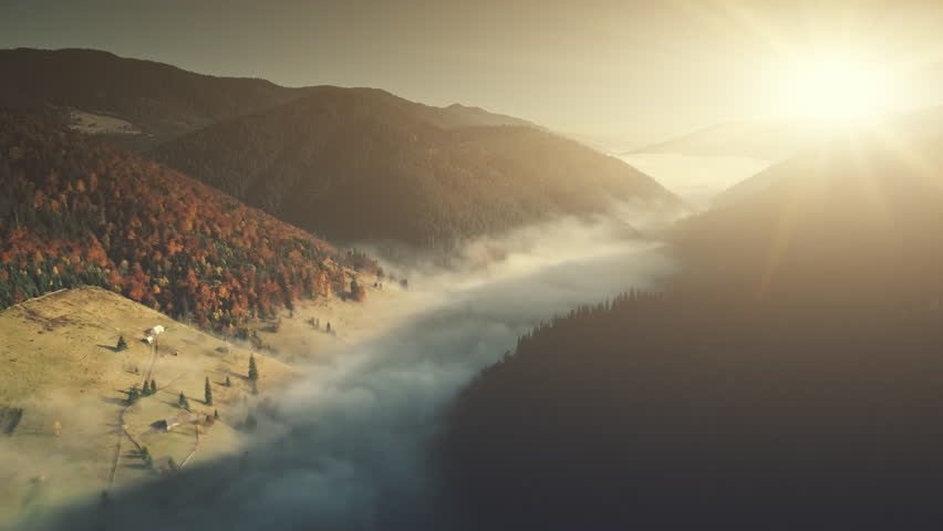 Misty Mountain Coniferous Forest Slope Aerial View. Fir Tree Wood Foggy Wild Nature Landscape Overview. Pine Forestry Highland Valley Eco Friendly Environment Concept Drone Flight Footage 4K (UHD) | Shutterstock HD Video #1026878975