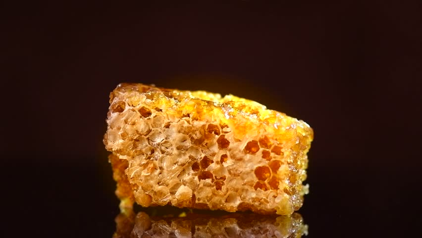 Honey dripping on honeycomb, isolated on black background. Thick organic honey dipping on wax honey comb. Organic syrup. Slow motion 120 fps. 4K UHD video | Shutterstock HD Video #1026943535