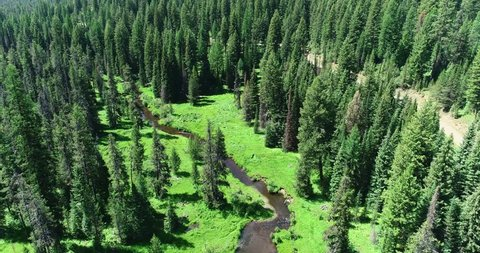 Aerial View of Mountain Stream Meandering Through a Meadow