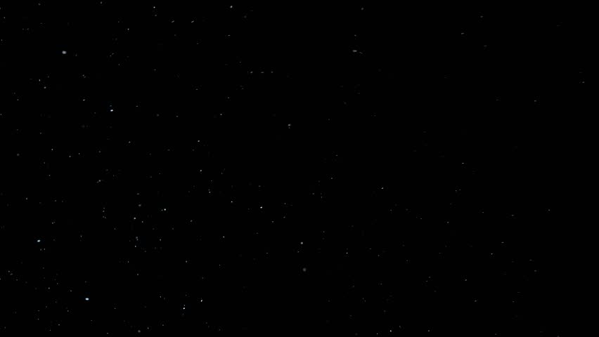 Natural Organic Dust Particles Floating On Black Background. Dynamic Dust Particles Randomly Float In Space. Shimmering Glittering Dust Particles With Bokeh. | Shutterstock HD Video #1027082465