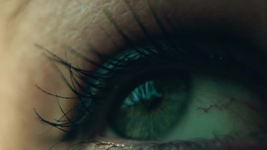 Eye Lash Close up shot slow motion beautiful girl | Shutterstock HD Video #1027158785