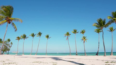 Beautiful wild island beach and palms Caribbean sea and white sand and blue sky and beach loungers. Amazing summer travel vacation beach background. Turquoise sea water and palm trees