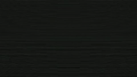 Black and white tv curved scanlines background (looped)
