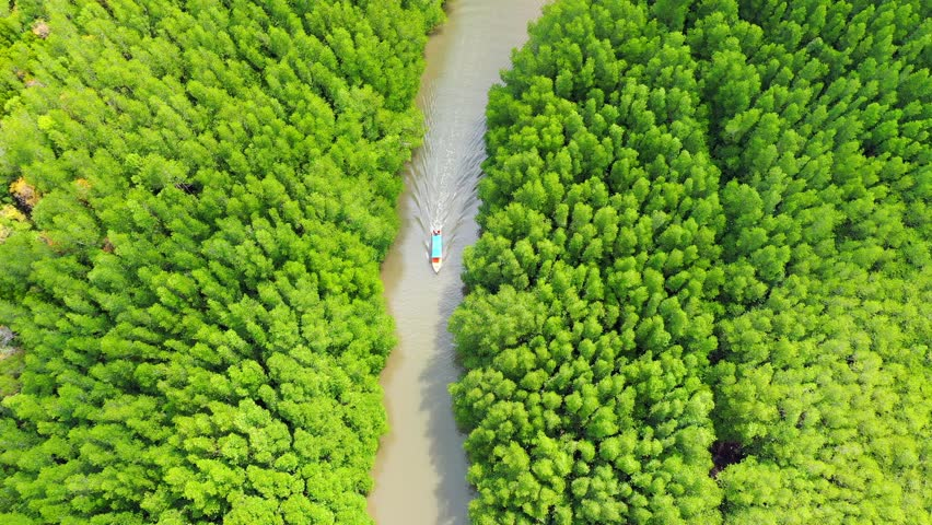 Aerial view of boats sailing in rivers along tropical mangrove forests  | Shutterstock HD Video #1027713125