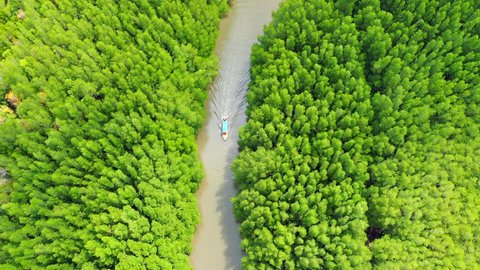 Aerial view of boats sailing in rivers along tropical mangrove forests