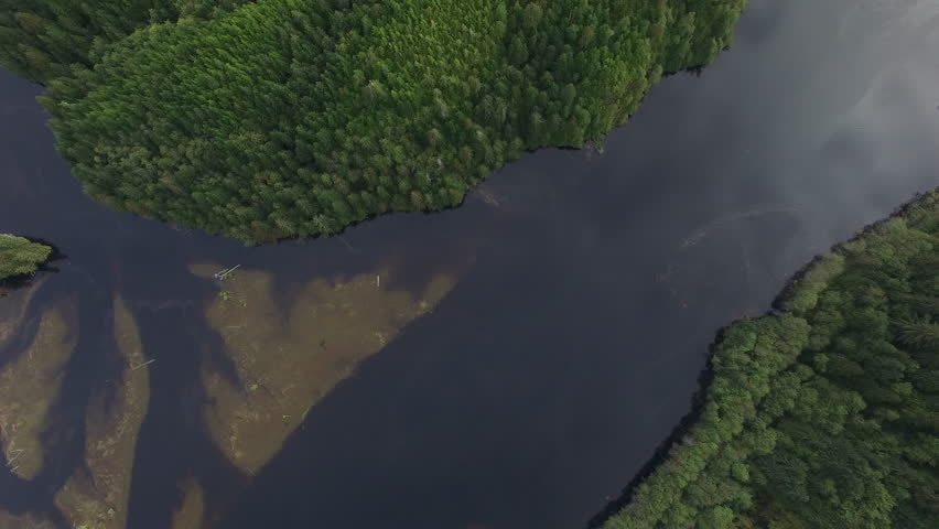 Aerial: Thick, Green Forests Surrounding Dark River in Port Hardy, British Columbia