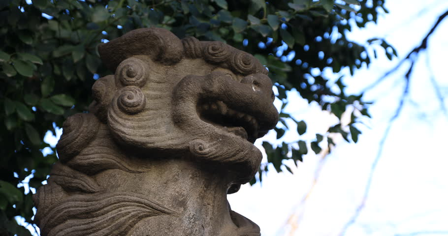 Statue guardian dog at the traditional shrine. Shinjuku district Tokyo Japan - 01.21.2019 : It is an old statue at the traditional shrine. camera : Canon EOS 5D mark4 | Shutterstock HD Video #1028153285