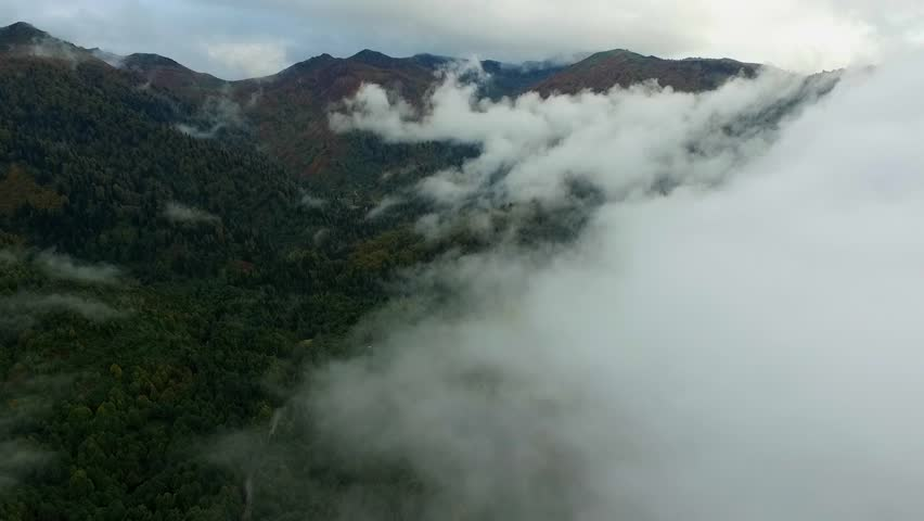 Fog and Clouds over Lake and Mountains.Flying Over Lake In Forest.	 | Shutterstock HD Video #1028373575