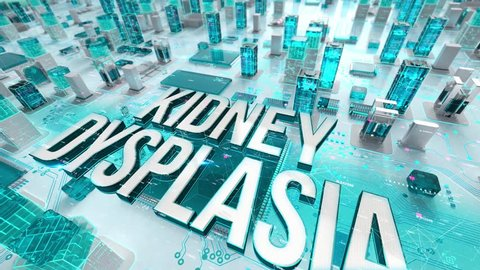 Kidney Dysplasia with medical digital technology concept