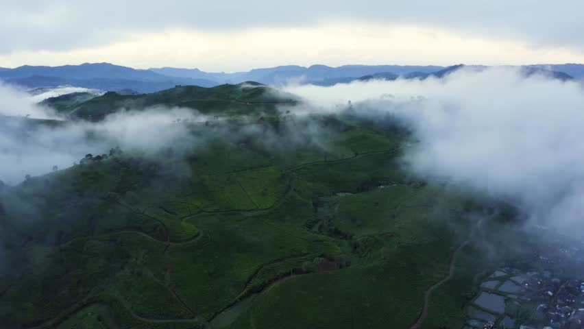 Beautiful aerial view of foggy morning above tea plantation farmland in Bandung, West Java, Indonesia. Shot in 4k resolution from a drone flying from right to left | Shutterstock HD Video #1028439185