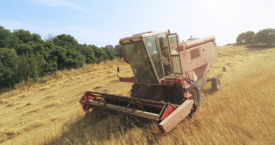 Thresher farming in golden wheat field. Aerial view of threshing machine working in Italy. 01