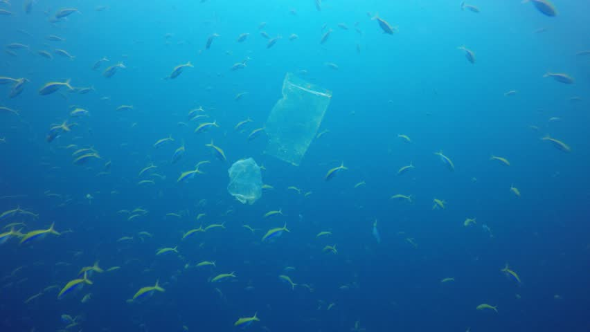 Plastic bags environmental pollution problem. Bags and fish in ocean  | Shutterstock HD Video #1028667035