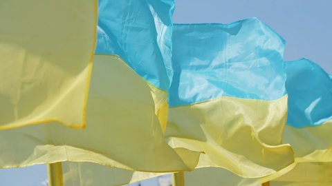 Row of blue and yellow Ukrainian flags fluttering in the wind, close up. Symbol of Ukraine