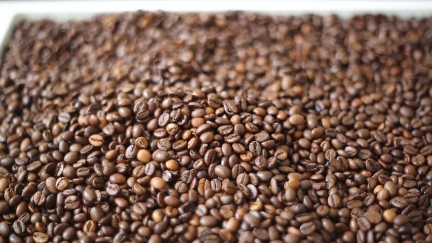 Brown roasted coffee beans is mix of arabica and robusta. Selected focus. Beautiful bokeh | Shutterstock HD Video #1029751595