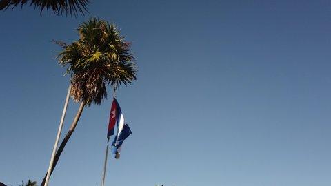 Cuban Flag Palm Tree. Cuban flag against a tropical palm tree and blue sky.