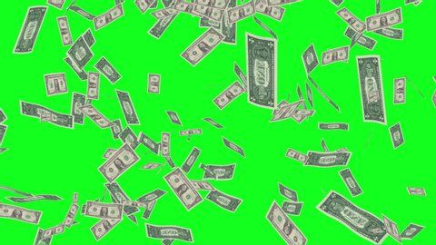 Green screen dollar bills rain effects animation, money rain 4k business  animation success, money dollars rain effect animation green screen, dollar  bills falling rain green screen business success