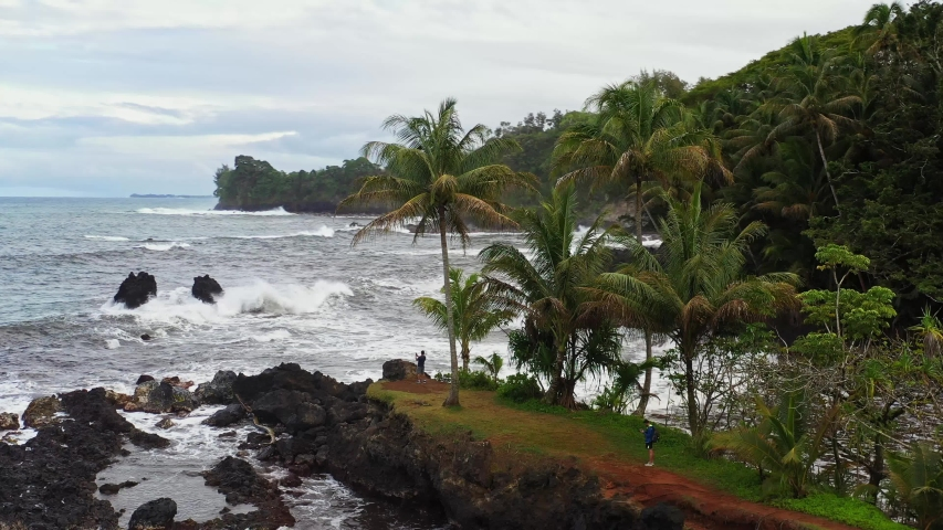 Aerial drone parallax shot around palm trees showing the waves hitting the rocks and trees at the Hawaii Tropical Botanical Garden in Papaikou | Shutterstock HD Video #1030307735