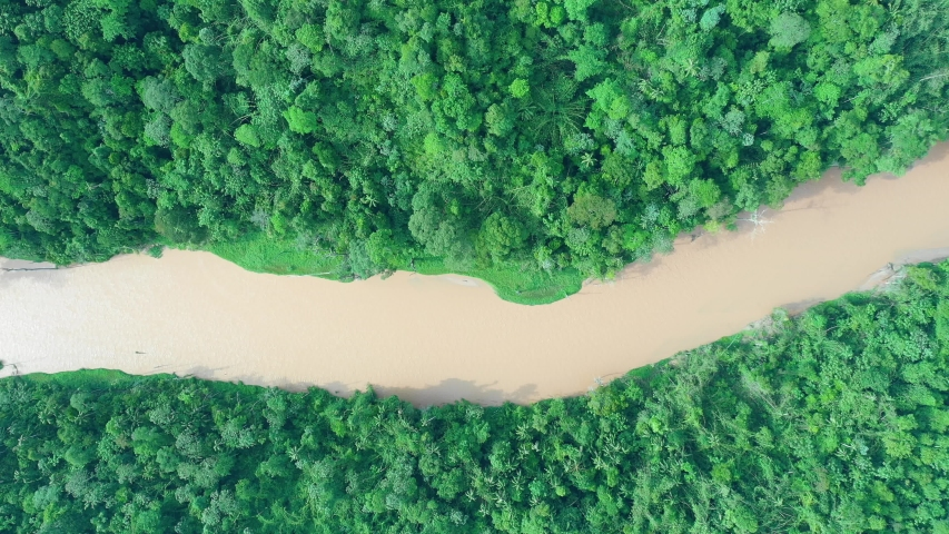 Aerial footage of rainforest and river in Malaysia  | Shutterstock HD Video #1030310585