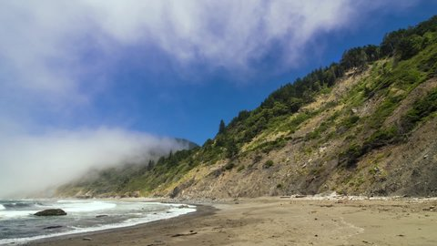 Time-lapse of fog and waves on the Northern California redwood forest coast