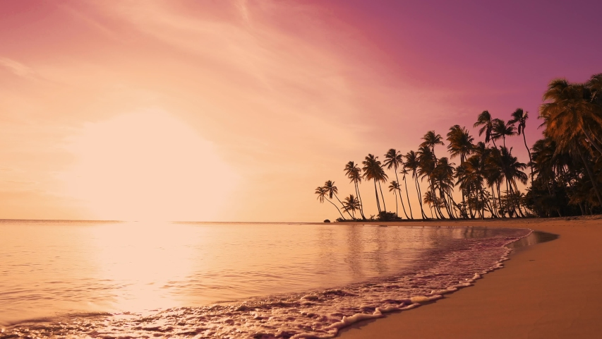 The sun over sea. Amazing red sunrise on beach palms island. Orange colors sunrise and waves. Nature sun sunrise palms beach background. Yellow sky, beautiful palm trees on the beach isle. Sunshine