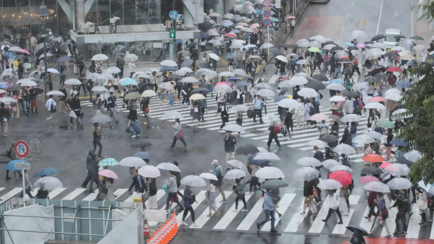 TOKYO, JAPAN - JUNE 15TH, 2019. Huge crowd of people with umbrella walking across the famous Shibuya scramble crossing during a rainy day. #1031644595