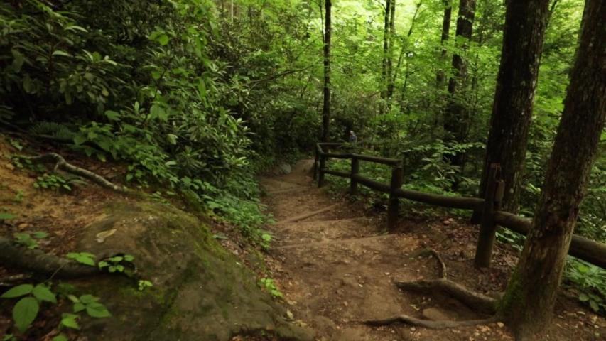 Nature Hike at Natural Bridge State Park, Kentucky   Shutterstock HD Video #1032281465