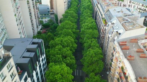 Aerial, tilt up, drone shot, above trees and traffic on Avenue Foch, surrounded by french buildings and architecture, in the city of Paris, on a sunny, summer day, in France