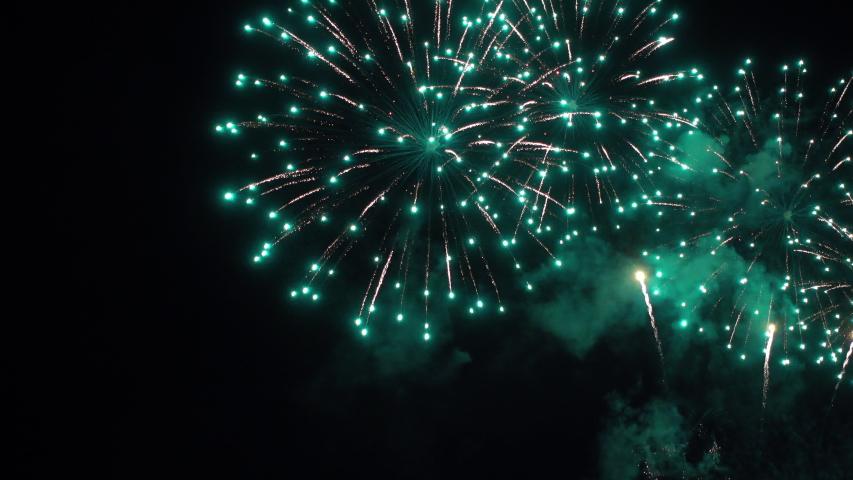 Static shot of a majestic firework in the black night sky. | Shutterstock HD Video #1032514925