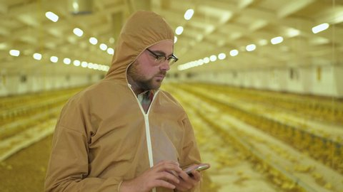 The worker in uniform examines process on poultry farm using smartphone. 4K