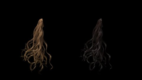 beautiful curly hair tress fluttering isolated on black with alpha, two colors brunette and blond