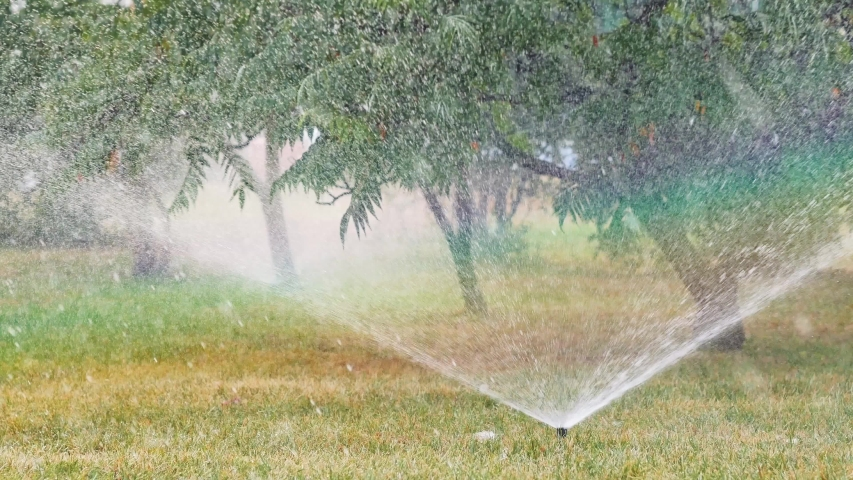 Field is watered with garden sprinklers. Rainbow appeared in spray from irrigators. Irrigation system sprinkler 4k | Shutterstock HD Video #1037162345
