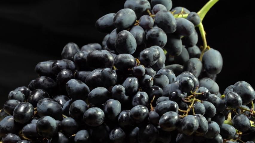 Black grapes rotate on black background. Grape close up