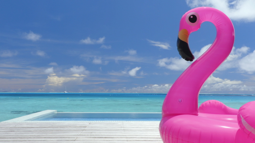 Pool Beach Vacation travel concept with inflatable pink flamingo float toy mattress by luxury swimming pool. Luxury lifestyle summer holidays travel background video. | Shutterstock HD Video #1038503615