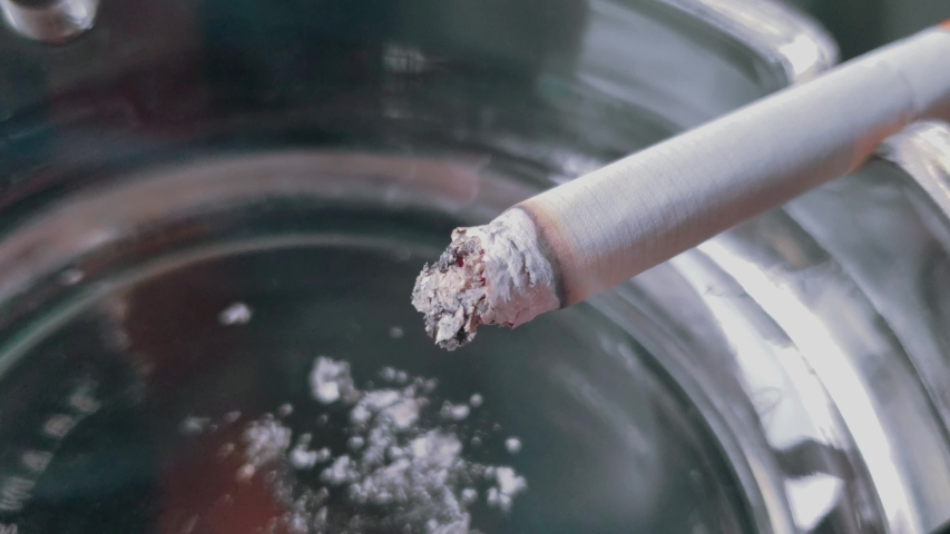 Close up view of Smoldering Cigarette in Ashtray | Shutterstock HD Video #1038907175